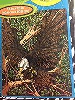 Eagle 16x 20カラーYour Ownジャンボベルベットポスター