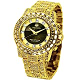 [ジョン・ハリソン]J.harrison 腕時計ソーラー電波シャーニング紳士用 JH-025GB メンズ 【正規輸入品】