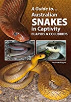 Australian Snakes In Captivity (A Guide to)