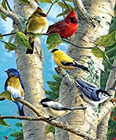 Wowdecor 数字油絵 数字キット40×50cm - カラフルな鳥ファミリーツリー - DIY ぬりえ 塗り絵 絵画 趣味 インテリア (フレームなし)