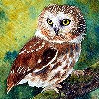 ZDDYX デジタル番号付き顔料塗装 5D描画鳥フクロウ動物画像アイコン