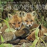 北海道の野生動物 2016年 カレンダー 壁掛け