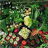 ホット販売100種子カボチャ、ピーチメロン、ヒョウタン、豆、コショウ、GourdHot SaleHot SaleHot SaleVegetableシード