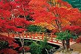 2016ピース ジグソーパズル 安芸の宮島 紅葉谷公園―広島 ベリースモールピース(50x75cm)