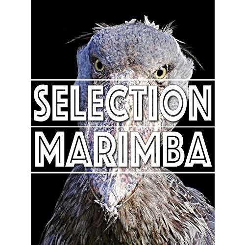 SELECTION MARIMBA ~デフォルトマリンバを『...