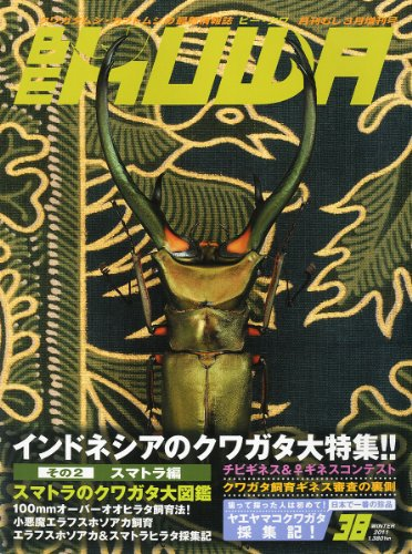 BE-KUWA (ビー・クワ) 2011年 03月号 [雑誌]