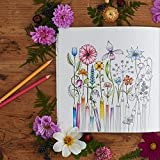 World of Flowers: A Coloring Book and Floral Adventure 画像