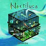 ノクティルカ(初回限定盤)(DVD付)
