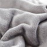 Flannel Fleece Luxury Blanket Throw Lightweight Cozy Plush Microfiber Solid Blanket (King, Gray)