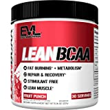 Evlution Nutrition LeanBCAA, BCAA, CLA and L-Carnitine, Recover And Burn Fat, Sugar And Gluten Free, 30 Servings (Fruit Punch