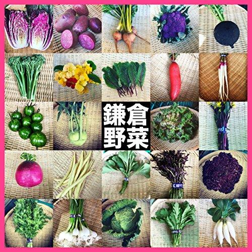 https://images-fe.ssl-images-amazon.com/images/I/615WqIOlw5L.jpg