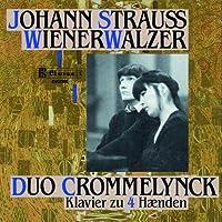 Wienerwalzer by J. STRAUSS