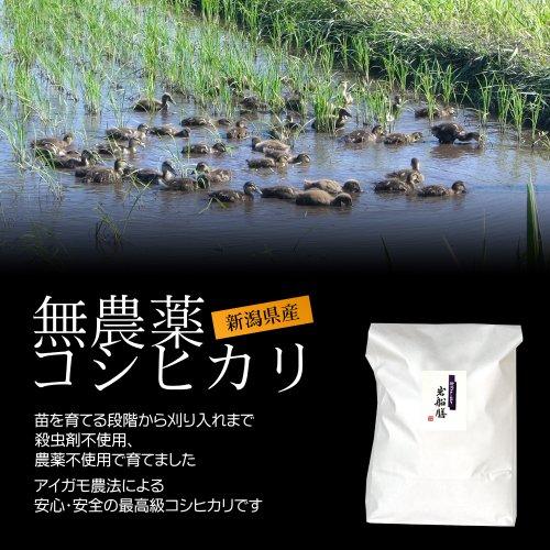 【ギフト用】新潟コシヒカリ(アイガモ農法・無農薬米) 3kg