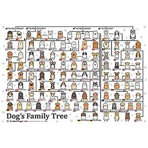 300ピース ジグソーパズル 犬の系統図(26x38cm)