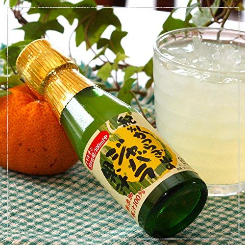 「紀州かつらぎ山のじゃばら果汁100ml」新岡農園(ジャバラオレンジストレート果汁100%無添加)?花粉症対策に