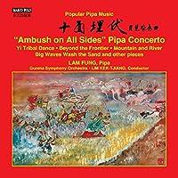 Popular Pipa Music