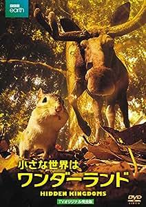 小さな世界はワンダーランド TVオリジナル完全版(2枚組) [DVD]