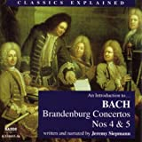 Brandenburg Concerto No. 4 in G - Third Movement: The two recorders converse in canon, accompanied for six exhilarating bars by cello 'continuo'