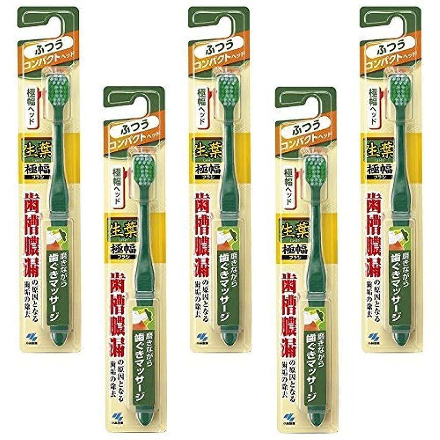 魅力遵守する袋【まとめ買い】生葉(しょうよう)極幅ブラシ 歯ブラシ コンパクトヘッド ふつう ×5個