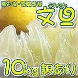 [訳あり] ぶんたん 文旦 約10kg
