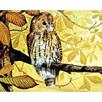 LovetheFamily 叶とフクロウ 数字キットによる絵画 数字油絵 数字キット塗り絵 手塗り DIY絵 デジタル油絵 ホーム オフィス装飾 (40x50cm, フレームレス)