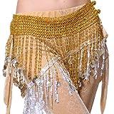 フィミ)Feimei ベリーダンスのヒップスカーフ/三角形アラビアコインフリンジ金色 [並行輸入品]