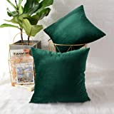 MERNETTE Velvet Soft Decorative Square Throw Pillows Covers Cushion Cases Set Pillowcases for Sofa Bedroom Car Chair, Velvet,