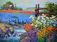 Wowdecor 数字油絵 数字キット40×50cm - デイジーラベンダーカラフルな花畑 - DIY ぬりえ 塗り絵 絵画 趣味 インテリア (フレームなし)