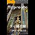 Trip Route 4.1 タイ バンコク編 2017: ガイドブック
