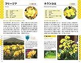 色と形で見わけ散歩を楽しむ花図鑑 画像