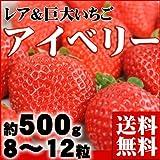 フルーツの目利きが厳選『築地市場のアイベリー いちご 約500g (8~12粒)』