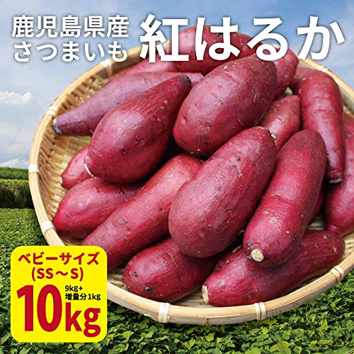 紅はるか ベビーサイズ 10kg (9kg+保証分1kg) 土付き 生芋 (130g以下のSS〜Sサイズ) 鹿児島県産 さつまいも べにはるか