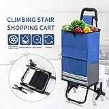 KELIXU Folding Shopping Cart, Laundry Utility Cart with Wheel Bearings Stainless Steel Frame (Light Blue)