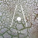 Ivywild - Single