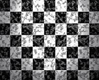 Photography Floordrop with Rubber Backing–Checkerboard床–10x 8ft。