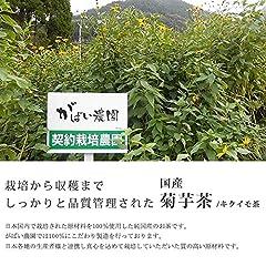 有機栽培 菊芋茶 2g×40包