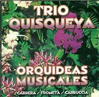 Orquideas Musicales
