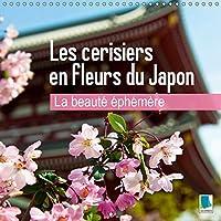 La beaute ephemere - Les cerisiers en fleurs du Japon 2019: Les fleurs du printemps (Calvendo Places)