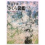 中島千波 さくら図鑑 (デッサンと作品シリーズ)