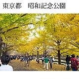 インテリア写真額縁昭和記念公園1当店オリジナル写真パネルオフィス・店舗の装飾にPhoto frame, Showa kinen park