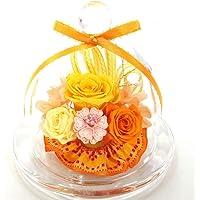 【Amazon.co.jp 限定】【NICHIFLRO】ニチフロ プリザーブドフラワー 成人式お祝い 卒業祝い 卒園記念…