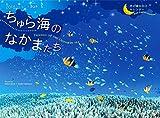 2018うみまーる中判ムーンカレンダー `ちゅら海のなかまたち−Friends of the Okinawan sea' (月の満ち欠け)