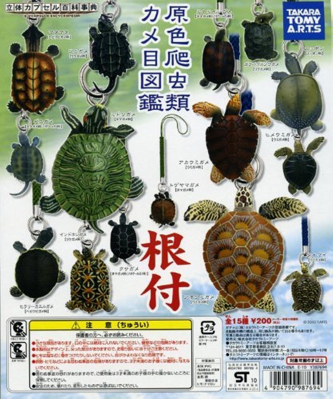 ガチャガチャ ガシャポン 立体カプセル百科事典 原色爬虫類カメ目図鑑根付 全15種