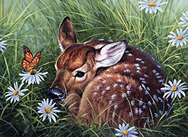 Diyの油絵子供のためのデジタル油絵大人初心者16x20インチ、牧草地のシダ--クリスマスの装飾ホームインテリアギフト (フレーム)