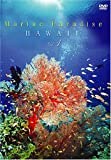 Marine Paradise Vol.1 ~ハワイ編~ [DVD]