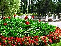 芸術はポスターを印刷します - 花が咲く緑の噴水路地 - キャンバスの 写真 ポスター 印刷 (80cmx60cm)
