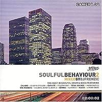 Soulful Behaviour 2