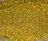 塗装 材料 ラメ フレーク パウダー 100g (ゴールド)