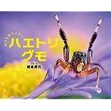 ちいさなハンター ハエトリグモ (ふしぎいっぱい写真絵本)