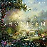 Ghosteen (2CD) 画像